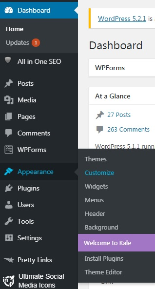 How to Customize Your Theme on WordPress